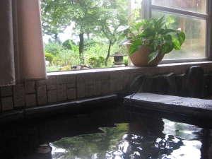 浴槽から庭と景色