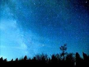 二人でランタン片手に星空ガーデン散策をお楽しみください。