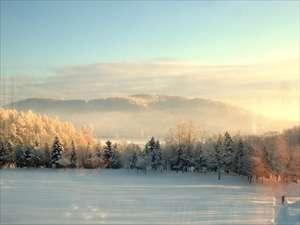 静寂に包まれた庭園の中をスノーシューピクニック