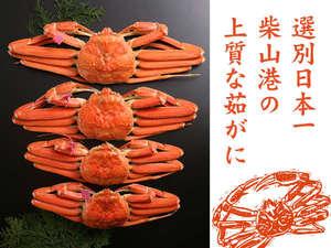 かにの選別日本一の柴山港の上質な茹でがに。