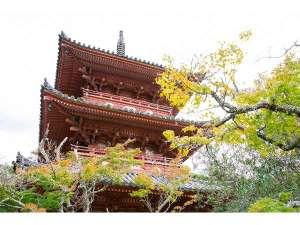 歩いて5分の太山寺は、神戸唯一の国宝建造物です!