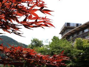 秋の外観:毎年、11月下旬より紅葉シーズンが始まります。音信川沿いを散策がおすすめです