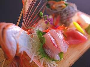 33_【板前渾身の会席料理_彩】氷見浜に揚がる旬のお魚5種のお刺身は絶品