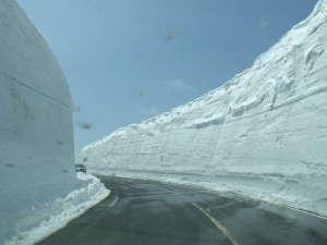 アスピーテラインの雪の回廊