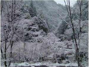 ◆玉川峡(橋本市)の冬のイメージ ホテルより車で約40分