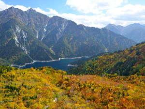 【~紅葉の見頃~】立山黒部アルペンルートは山頂より紅葉し始め、9月下旬~11月上旬が見ごろです♪