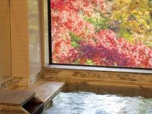 紅葉時の温泉浴場は至福のヒトトキ・・・。