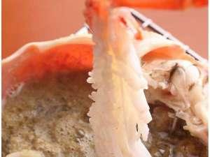 しゃぶしゃぶにして華開いた蟹を甲羅焼きミソにつけて♪絶品です