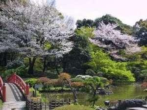 【日本庭園】春