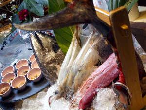 【バイキング一例】函館ならでは!新鮮な活イカや鮪のお造りをお楽しみください。