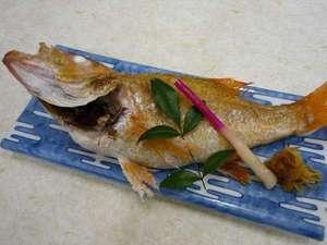 新潟高級魚「のど黒」塩焼き