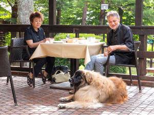 レストランは、もちろん大型犬も同行可です♪天気のいい日にはテラスでのんびりと。