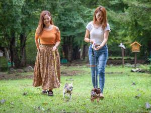 どこまでも続く広々とした緑の中を、愛犬とお散歩♪澄んだ空気に心洗われる時間です。