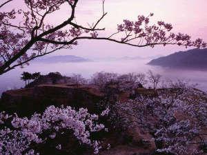 春には桜と雲海の幻想的な風景が広がります。