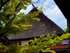 【季節の便り】古民家の深奥な佇み、郷愁の匂い。古きよき時代の風景がここにある(新緑の季節は4月後半~)