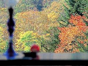 ラウンジ久糲和から眺める美しいニセコの紅葉
