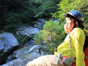 【白谷雲水峡】水の森小鳥のさえずりを聞きながら、原生林や苔の森の自然にうっとり♪
