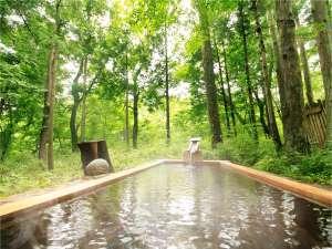 風の香りや、芽吹きを愉しむ春の湯めぐり。4つの貸切露天風呂は予約不要・無料でご利用いただけます。