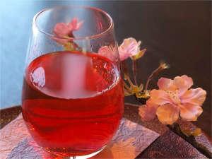 春旅プラン限定!桜の香がふんわり香る、見た目も春らしい桜酒♪女性のお客様に人気です