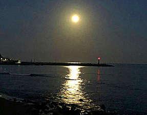 宇佐美湾に輝くムーンロード