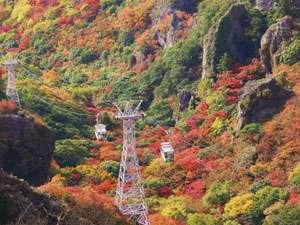 日本三大渓谷美の一つとも賞される『寒霞渓』