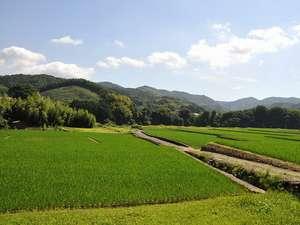 ◆宿周辺は田舎の風景が広がります。すがすがしい空気の中のんびりとお過ごしください♪