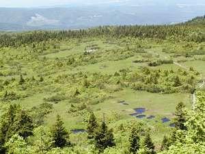 八甲田の温泉