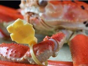 100%地元産タグ付ブランド蟹
