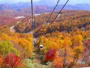 【秋】10月~11月にかけて楽しめる裏磐梯の紅葉-おすすめはロープウェイの乗って空からの紅葉狩り♪
