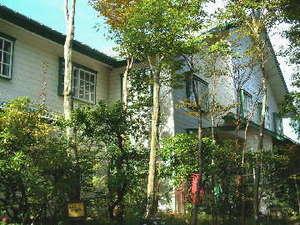 箱根強羅温泉 コージーイン 箱根の山の画像