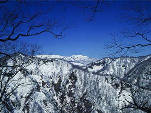 雪に閉ざされた冬の白神山地