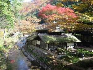 秋の長寿の湯