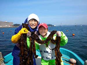 今だけココだけ体験♪ホテル初?鳴門ワカメ収穫で漁師体験!