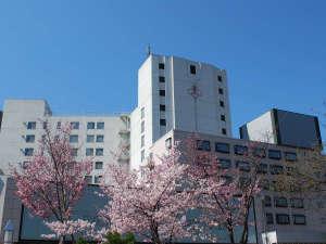 【外観】春~せせらぎが耳に心地よい。まさに札幌の奥座敷