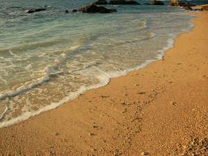目の前のビーチまではお庭から裸足で30秒。