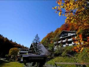毎年蓼科温泉ホテル親湯周辺の紅葉はとても綺麗です。