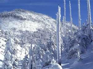 雪が多く、気温が低いと樹氷を見ることが出来る