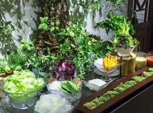 【ご朝食 蓼科 山ごはん】高原Sunny Salad Bar:フレッシュお野菜をちょこっとずつ