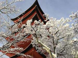 冬の五重塔