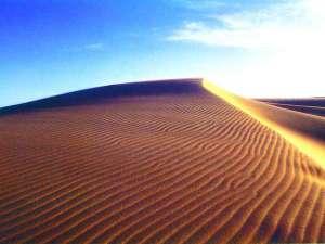 鳥取砂丘≪日々異なる自然の様相を見せる鳥取の観光地≫
