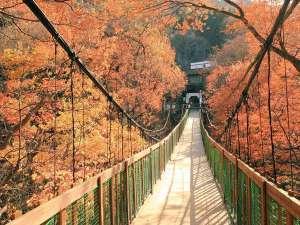 紅葉の色づくつり橋