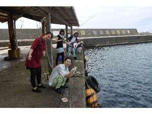 鮎川漁港で魚釣り体験
