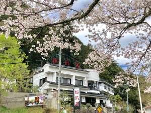 離れのお宿 松風苑 [ 愛知県 新城市 ]  湯谷温泉