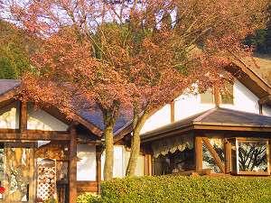 火の鳥温泉 欧風料理宿 Hinotori:写真
