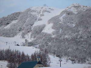 目の前には鉢伏山山頂リフトからハチ北につながっていて往来可能です。