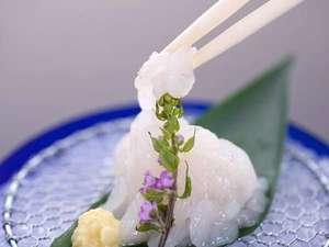 富山湾の宝石キトキト「白海老お造り」ぜひ味わってくださいませ。