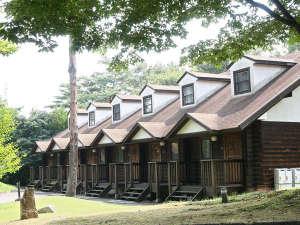 *【ログ棟】外観/緑の木立の中に並ぶログ棟は高原リゾートの雰囲気たっぷり。