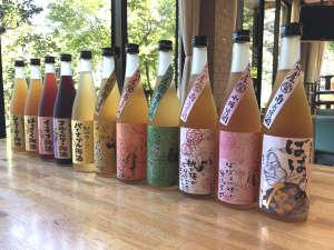 最高級の紀州産南高梅を使用した梅酒原酒をはじめ、果実の入ったフルーティなものまでご用意!