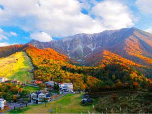 紅葉が美しい秋の大山