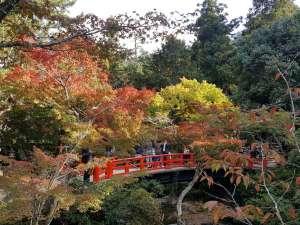 宮島 紅葉谷公園へは分かりやすいアクセスでお越しいただけます。